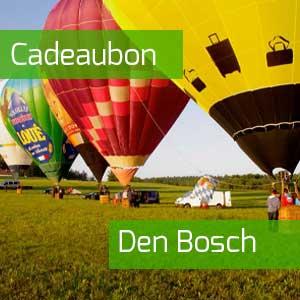 Kadobon ballonvaren Den Bosch